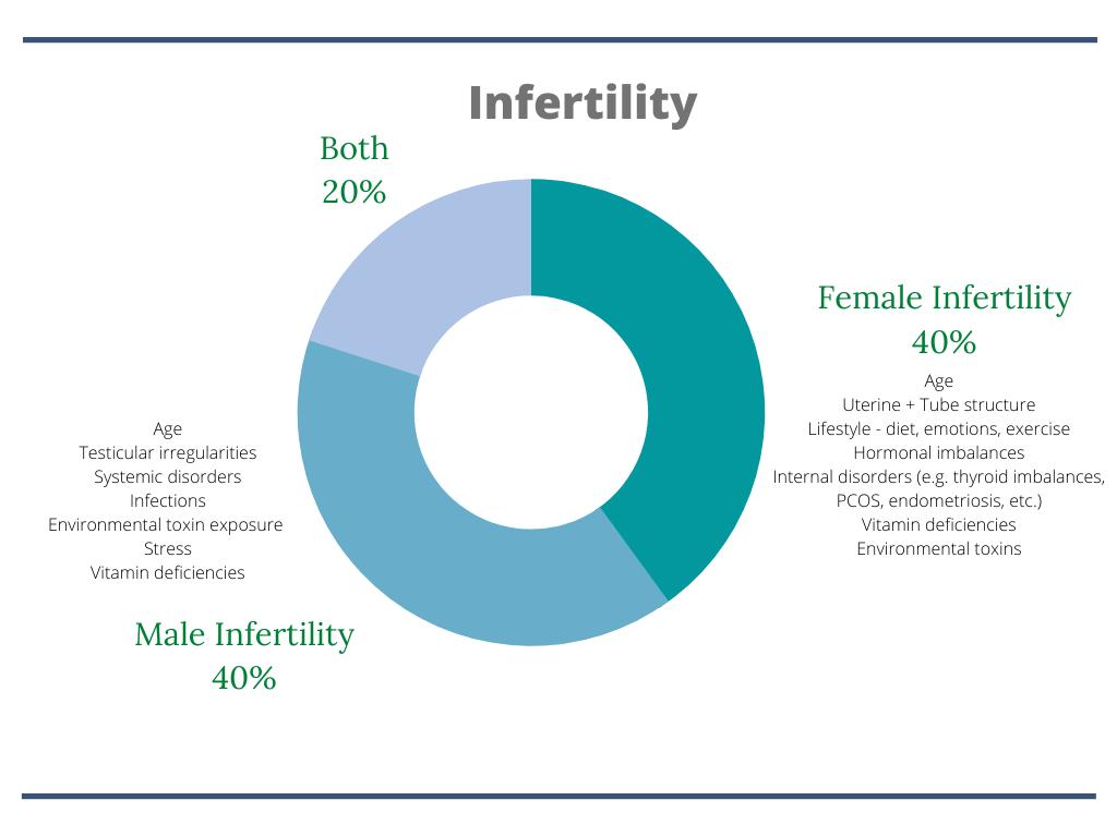 factors-contributing-fertility-health